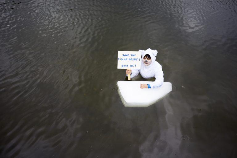 Eisbären in der Rheinaue #COP23