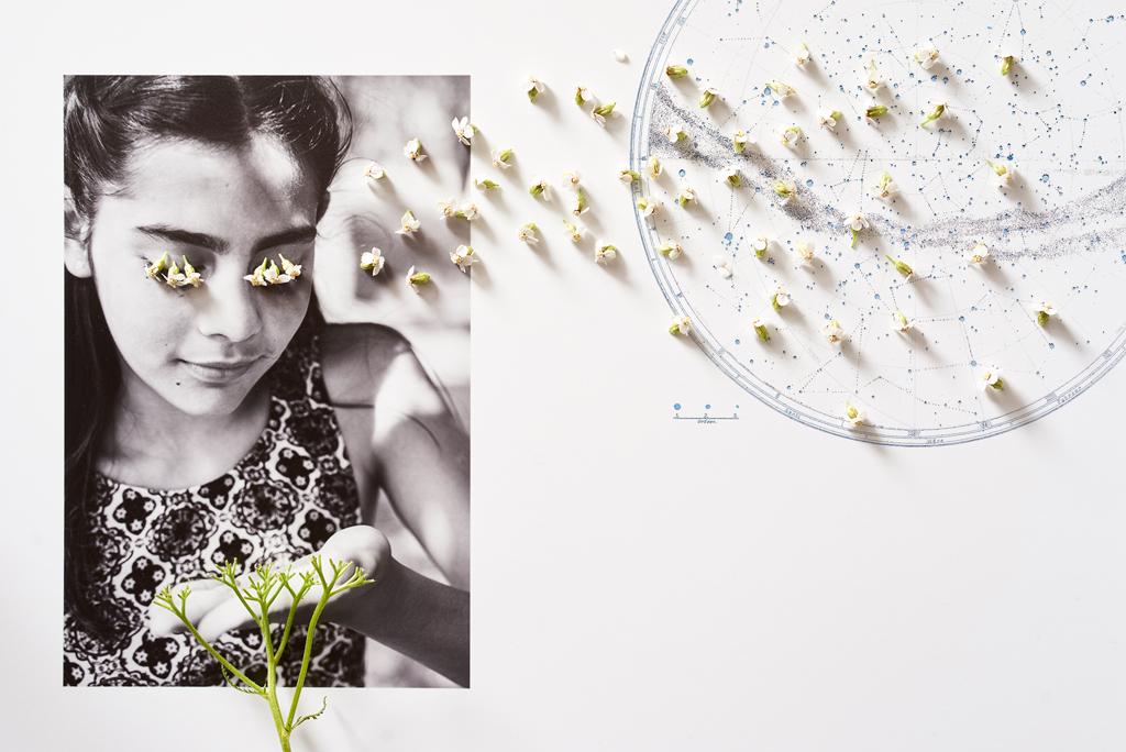 Anne Barth Photography